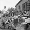 The Liberation of Sandbostel Concentration Camp, May 1945 BU6206.jpg