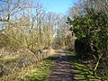 The London Loop long distance footpath approaching Little Britain lake - geograph.org.uk - 1754463.jpg