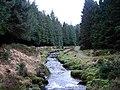 The severn looking downstream - geograph.org.uk - 1122543.jpg