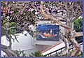 This is a painting that hangs over an underpass at San Clemente Pier - panoramio.jpg