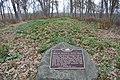 Tompkins-Brindler Mound Group.jpg