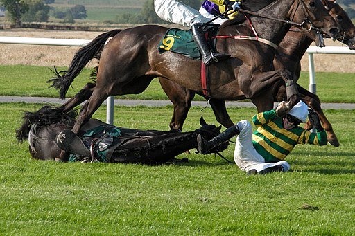 Tony McCoy fall