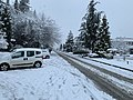 Trabzon Feb 2020 19 33 41 794000.jpeg