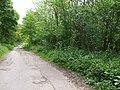 Track to Burton Flats - geograph.org.uk - 1283117.jpg