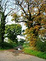 Track to Crosby Court Grange - geograph.org.uk - 260159.jpg