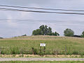 Tremper Mound HRoe 2009 03.jpg