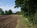 Trent Valley Way heading north-west from East Bridgford - geograph.org.uk - 956005.jpg