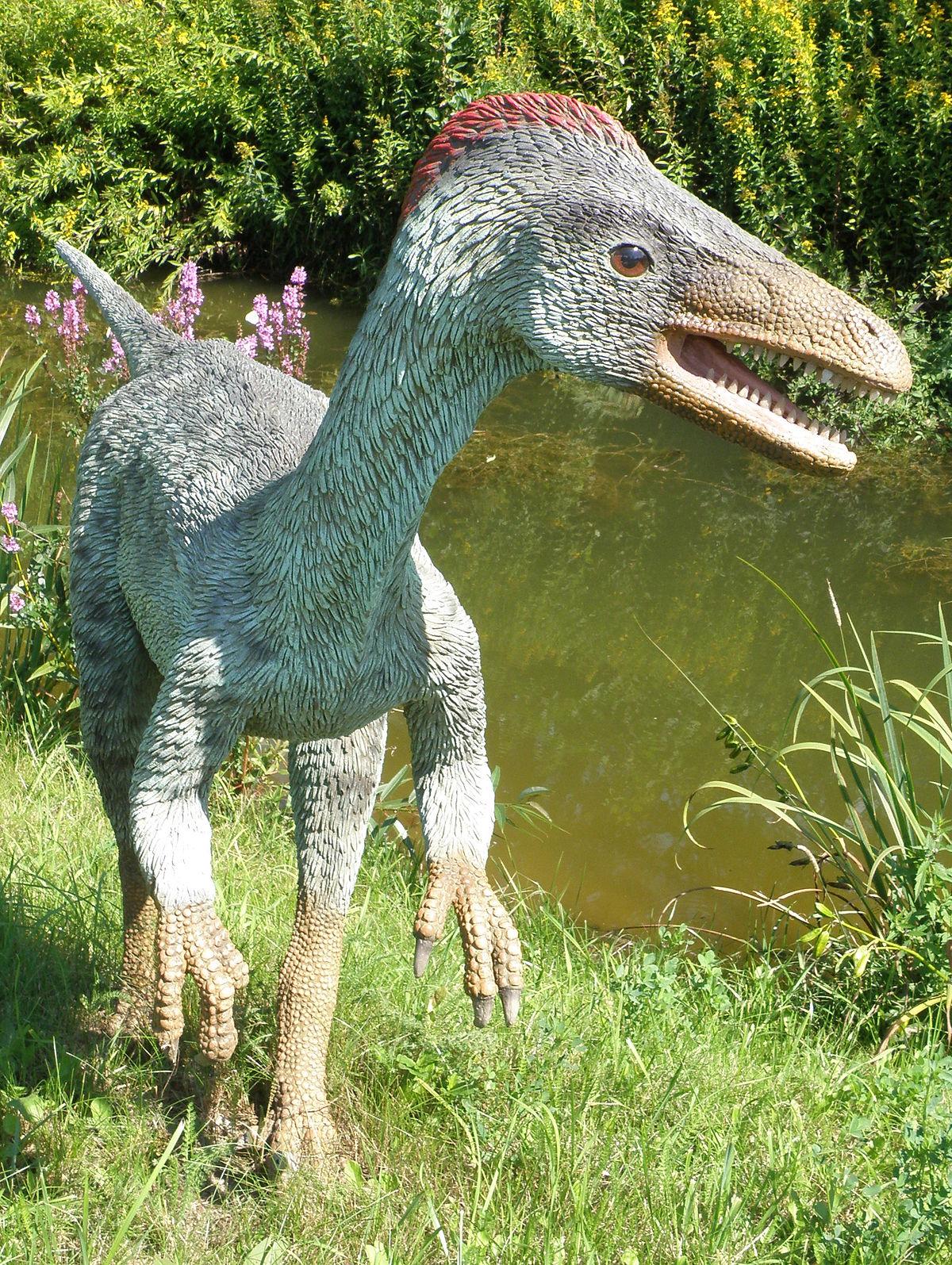 Troodon - JuraPark Baltow (1).JPG