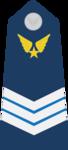 Trung Sĩ Nhất-Airforce 1.png