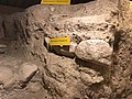 Tubac Presidio foundation 1 - Tubac Arizona.jpg