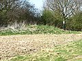 Tumulus^ - geograph.org.uk - 1235149.jpg