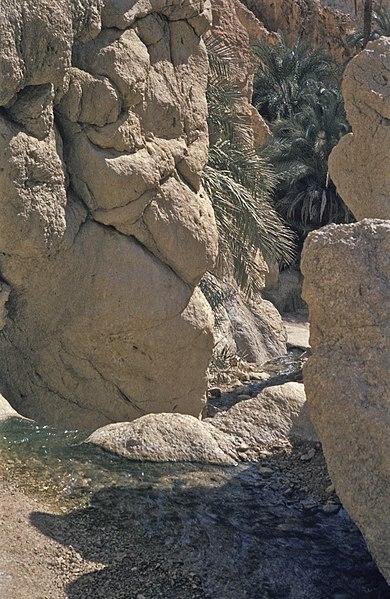 File:Tunesien1983-003 hg.jpg