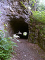 Tunnel on the track - panoramio.jpg