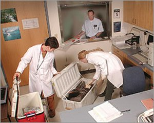 Clark R. Bavin National Fish and Wildlife Forensic Laboratory - Evidence Processing, part of Administration