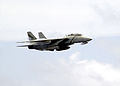 US Navy 030513-N-0295M-009 An F-14D Tomcat makes a supersonic fly-by.jpg