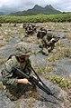 US Navy 050627-N-9866B-040 U.S. Marines set-up a perimeter on a training area in Hawaii.jpg