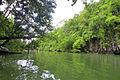 Underground River in Puerto Princesa, Palawan 07.JPG