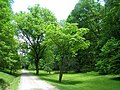 University of Tennessee Arboretum - entry.JPG