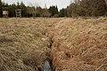 Unterhölzer Wald-3482.jpg