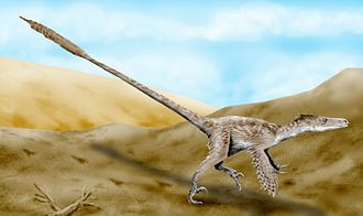 1924 in paleontology - Velociraptor