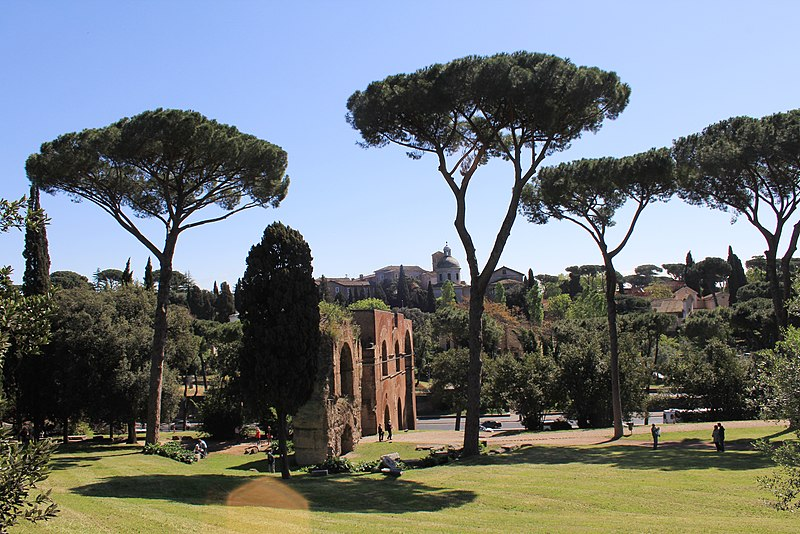 File:View from Palatine Hill 2011 1.jpg