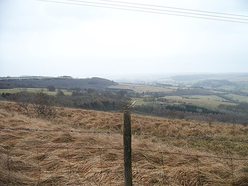 View from Wardens' Way - geograph.org.uk - 1702829