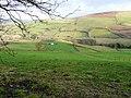 View towards Pant - geograph.org.uk - 685029.jpg