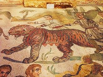 Villa Romana del Casale - A tigress in the big game hunt mosaic