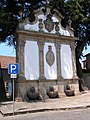 Viseu, Fonte Municipal (5986884235).jpg