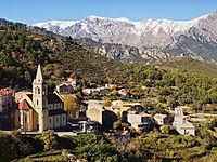 Vivario-village.jpg