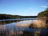 Vyaliki Boltsik Lake.JPG