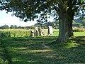 Wéris-dolmen d'Oppagne (4).jpg