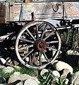 Wagon Wheel, MCCC, Mentone 7-2012 (7557535086).jpg