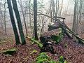 Waldbänkchen.jpg