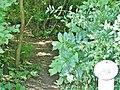 """Wanderweg im """"Württembergisch' Wunderbad"""" Bad Boll - panoramio.jpg"""