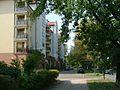 Warsaw - Szklanych Domów Street - panoramio.jpg