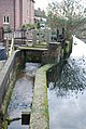 Water Management - River Allen at New Town - geograph.org.uk - 657137.jpg