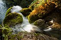 Waterfall in plitvicka romanceor 4.jpg