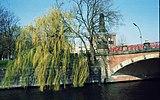 Willow-salix-bridge-Spree.jpg