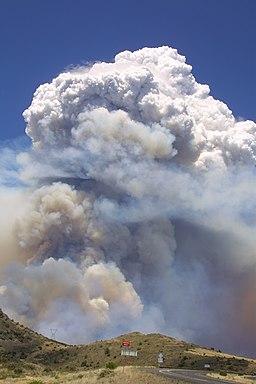 Willow Fire AZ 7 8 2004 SE burnout 035-002