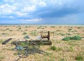 Winch, Lydd on Sea Beach - geograph.org.uk - 449294.jpg