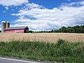 Windham Township Ohio Wheat Field.jpg