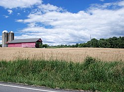 A wheat field, barn and silos along Route 82