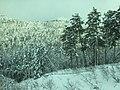Winter season in Yamagata and Fukushima Prefecture, Japan; December 2020 (13).jpg