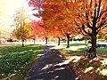 Yakima Greenway under the shade of Autumn - panoramio.jpg