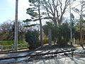 Yamagata Castle Monument.JPG