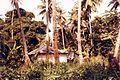 Zanzibar upcountry (3200141085).jpg