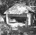 """""""Šounik"""" z """"domačimi"""" panji, Bovec 376 1952.jpg"""