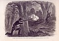 """A Rebel Prowler Shooting a Union Picket Near Jefferson City, Missouri."".jpg"