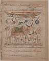 """Oxen amongst Foliage"", Folio from a Manafi' al-Hayawan (On the Usefulness of Animals) of Ibn Bakhtishu' MET sf57-51-31r.jpg"